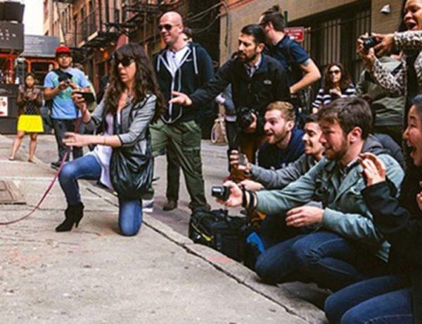 10. Il carlino newyorkese che si intende di arte
