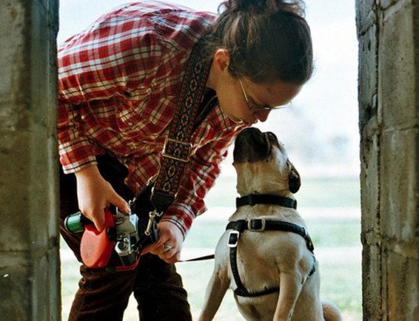 10 cose da sapere sul cane carlino