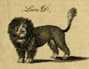 Alexander Bell, Raffigurazione di Lion Dog – 1750